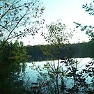 Still lake by IrisGelbart