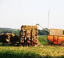 Makin' Hay by Darby Snyder