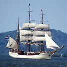 The Bark Europa - A Tall Ship by BarbL