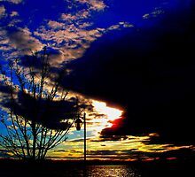 Coming to the end of the day  by Rick  Todaro