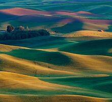 Palouse Hills by RavenFalls