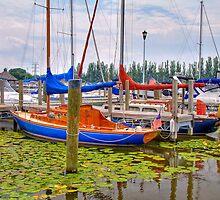 Lakeside Marina by ECH52