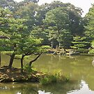Ornamental trees, Golden pavilion, Kyoto by johnrf