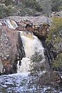 Koorawatha Falls NSW by julie anne  grattan