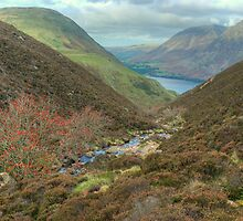 The High Stile Walk....Scale Beck by VoluntaryRanger