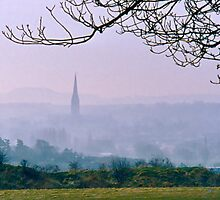 Salisbury Cathedral by David Davies