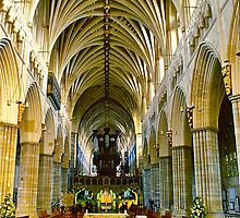 Exeter Cathedral by David Davies