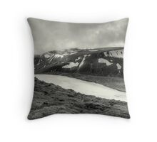 The Last Days Of Winter Throw Pillow