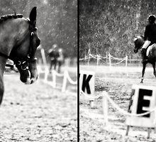 Dressage In The Rain by Victoria DeMore