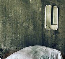 19.8.2010: Sweet Dreams and Mirror by Petri Volanen