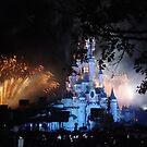 Disney Fireworks Spectacular by NowhereMan