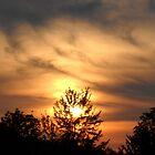 Sunset in Ohio by debbiedoda