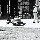 Tortoise and Man, Boston by MaggieGrace