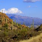 Sneaking Up on Tucson by John Carpenter