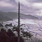 Mysterious Oregon Coast by John Carpenter