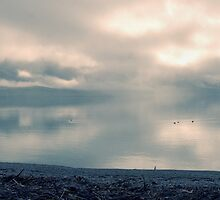 Lake Wakatipu by Dean Mullin
