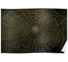 Spider art Poster