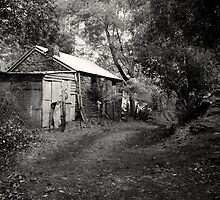 Miners Cottage, Walhalla  by Christine  Wilson Photography