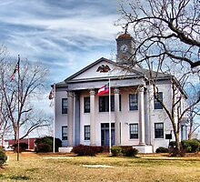 New Marion County Courthouse - Buena Vista, Georgia by Janie Oliver