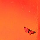 To me it's a beautiful tiny butterfly... (Orange tones) by Valerie Rosen
