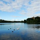 Linlithgow Loch with view of Palace by ©The Creative  Minds