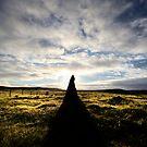 Callanish 2 at dawn by David Robinson