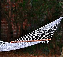 The Hammock by Gayle Dolinger