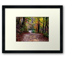 Autumn Colors Deep Within The Wilderness Country Road Framed Print