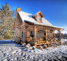 Dream Cabin by C David Cook