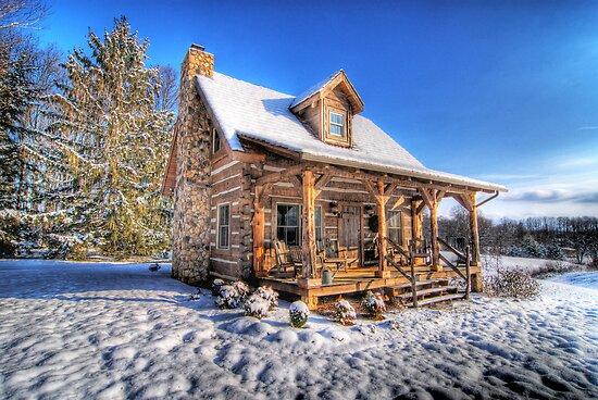 Dream Cabin by C David Cook