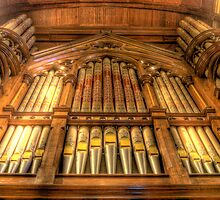 St Paul's Cathedral Organ by Scott Sheehan