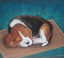 Sleeping Puppy by LouAnderson