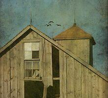 Rural Iowa Barn 5 by angelandspot