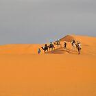 Camel Trek Over Dunes by emjaynie
