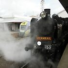 K 153 Steam Loco-Ballarat Station by judygal