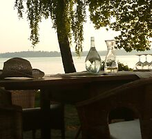 Summertime and wine - Lake of Constance, Germany by smambrosius