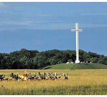 Papal Cross & Deer - Phoenix Park, Dublin Ireland by kelliejane