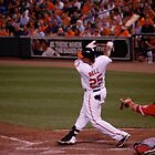 Orioles by ericafaye