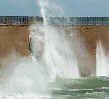 Splash by Els Steutel