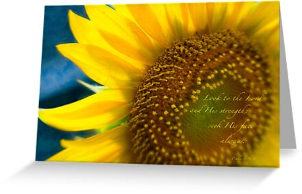 Sunflower Blue by JulieLegg