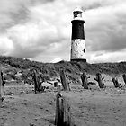 Spurn Point, East Yorkshire - 201 views by Neil Clarke