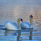 The Swans Of Silver Lake by James Brotherton