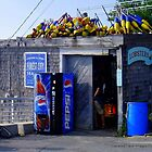 Peaks Island Lobster Shack by DoulaFaire