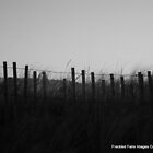 Beach fence by DoulaFaire