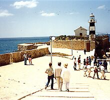 Harbour Walls, Acre, Israel by Shulie1