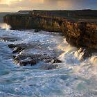 Seaswept by Paul Pegler