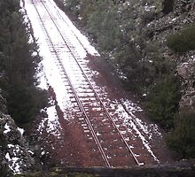 LOG on train track - DANGER !! by gaylene