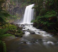 Hopetoun Falls by Paul Piko