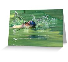 Penguin in action Greeting Card
