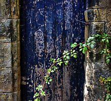 Door to the secret garden. by inkedsandra